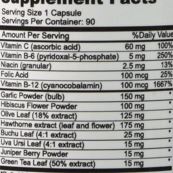 Natural Genetics Best Blood Pressure Support Supplement